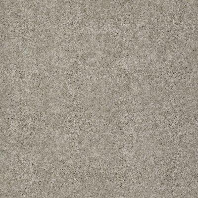 Shaw Floors Foundations Keen Senses II Net Mocha 00790_E9768