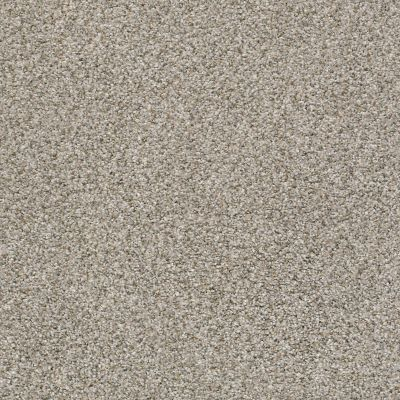 Shaw Floors Foundations Make It Work Net Cobble Stone 00573_E9769