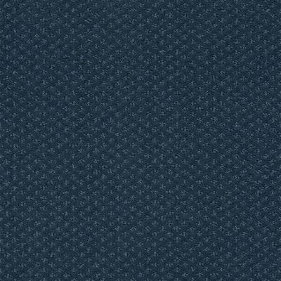 Shaw Floors Foundations Infallible Instinct Net Modern Spaces 00473_E9774