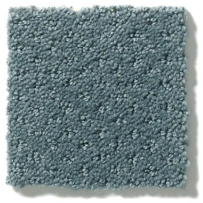 Shaw Floors Value Collections Infallible Instinct Net Voyage 00480_E9774
