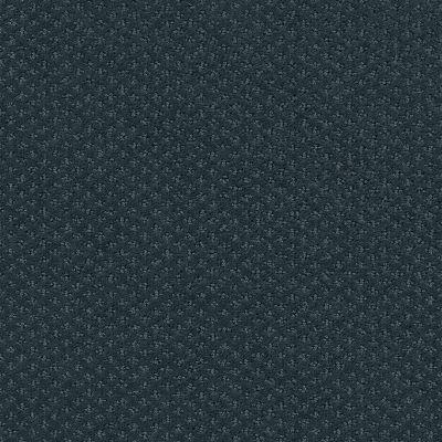 Shaw Floors Foundations Infallible Instinct Net Moon Bay 00481_E9774