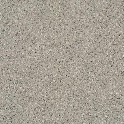 Shaw Floors Foundations Infallible Instinct Net Silhouette 00570_E9774