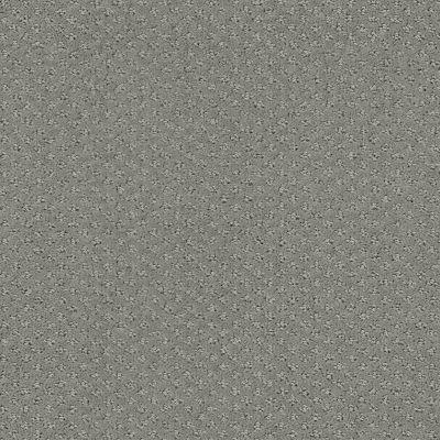 Shaw Floors Foundations Infallible Instinct Net Metal 00577_E9774