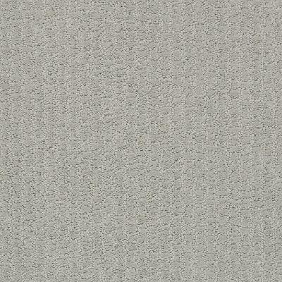 Shaw Floors Foundations Complete Control Net Offshore Mist 00477_E9775