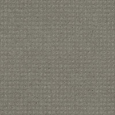 Shaw Floors Foundations Perpetual Move Net Slate 00570_E9776