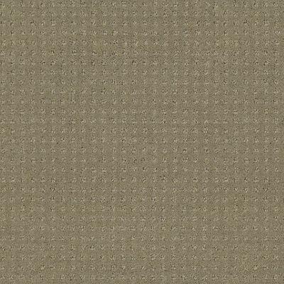 Shaw Floors Foundations Perpetual Move Net Mocha 00790_E9776