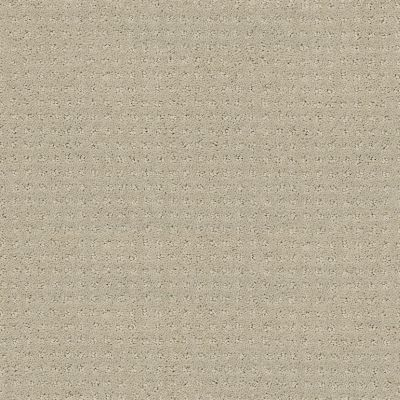 Shaw Floors Value Collections Alluring Disposition Net Mindful 00190_E9777