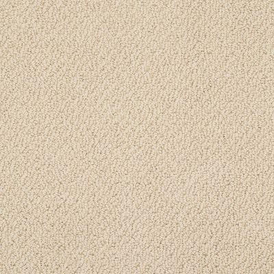 Shaw Floors Value Collections Smart Thinking Net Golden Rule 00185_E9778