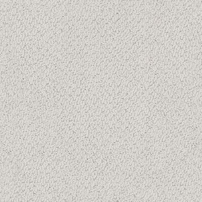Shaw Floors Foundations Smart Thinking Net Silver Charm 00560_E9778