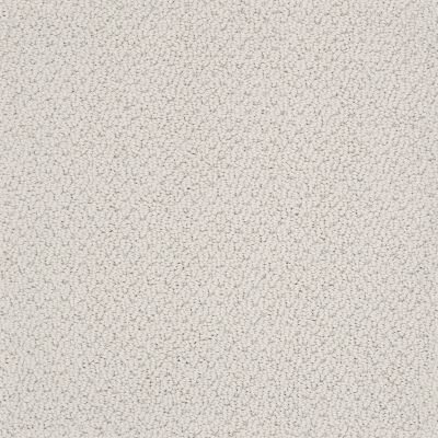 Shaw Floors Value Collections Smart Thinking Net Morning Mist 00591_E9778