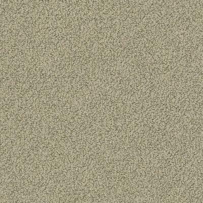 Shaw Floors Value Collections Smart Thinking Net Mocha 00790_E9778