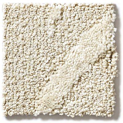 Shaw Floors Vineyard Grove Net Linen 00100_E9780