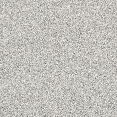 Shaw Floors Bellera Just A Hint I Net Mist 00107_E9783
