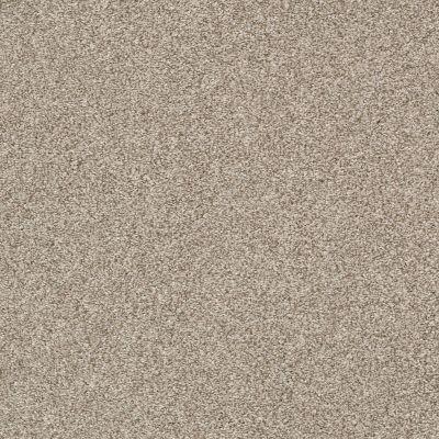 Shaw Floors Bellera Just A Hint II Net Toast 00105_E9784