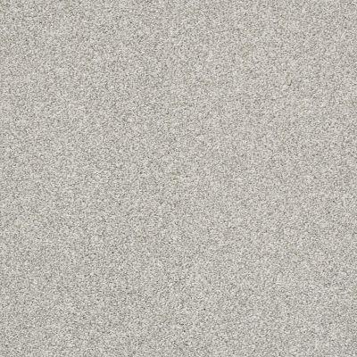 Shaw Floors Bellera Just A Hint II Net Dew 00106_E9784