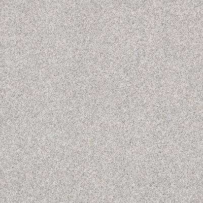 Shaw Floors Bellera Just A Hint II Net Mist 00107_E9784