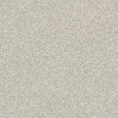 Shaw Floors Bellera Just A Hint II Net Platinum 00500_E9784