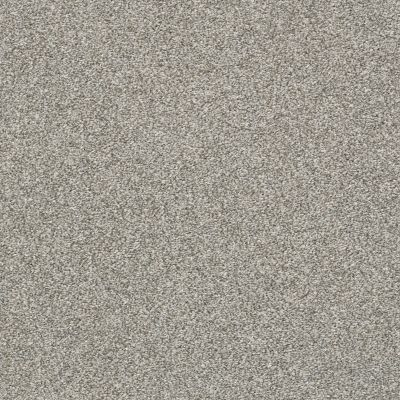 Shaw Floors Bellera Just A Hint II Net Sterling 00501_E9784