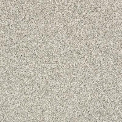 Shaw Floors Bellera Just A Hint II Net Fog 00503_E9784