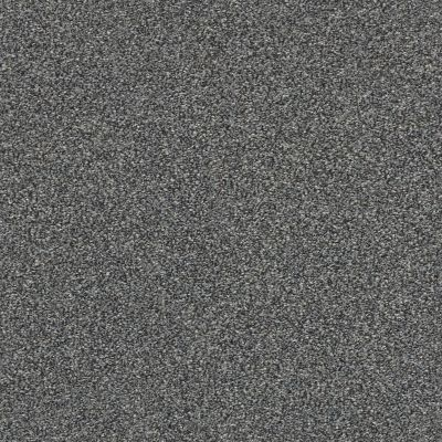 Shaw Floors Bellera Just A Hint II Net Steel 00505_E9784