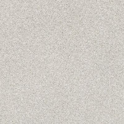 Shaw Floors Bellera Just A Hint II Net Nickel 00510_E9784