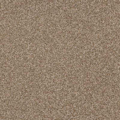 Shaw Floors Bellera Just A Hint II Net Bronze 00602_E9784