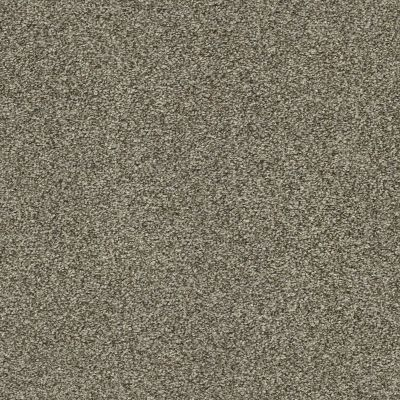 Shaw Floors Bellera Just A Hint II Net Dreamy Taupe 00708_E9784