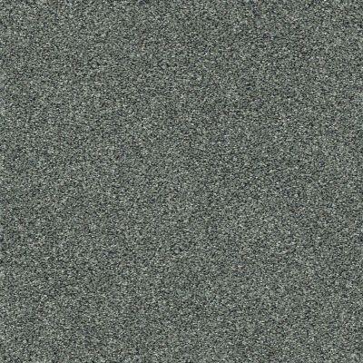 Shaw Floors Bellera Points Of Color I Net Sea Glass 00300_E9785