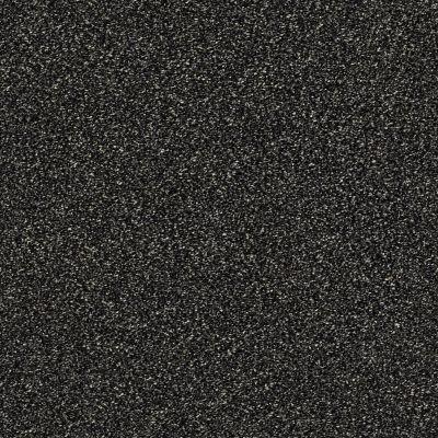 Shaw Floors Bellera Points Of Color I Net Truffle 00506_E9785