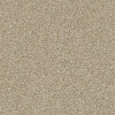 Shaw Floors Bellera Points Of Color I Net Khaki 00700_E9785