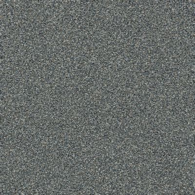 Shaw Floors Bellera Points Of Color II Net Slate 00401_E9786