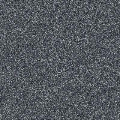 Shaw Floors Bellera Points Of Color II Net Denim 00402_E9786