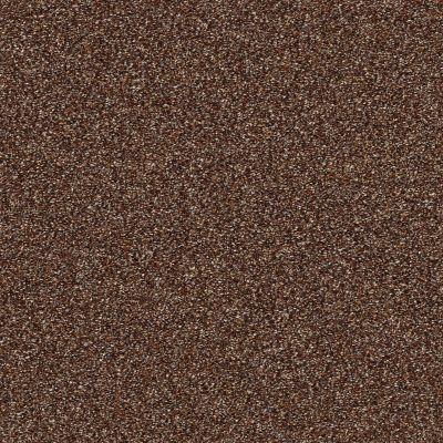 Shaw Floors Bellera Points Of Color II Net Maple Leaf 00601_E9786