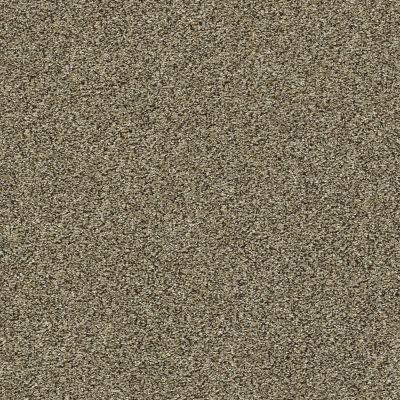 Shaw Floors Bellera Points Of Color II Net Leather 00704_E9786