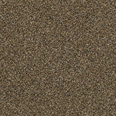 Shaw Floors Bellera Perpetual I Net Gold Rush 00200_E9787