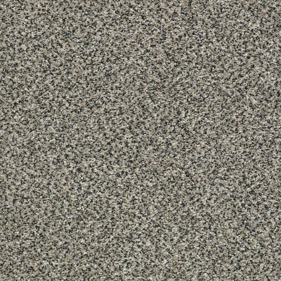 Shaw Floors Bellera Perpetual I Net Shadow 00504_E9787