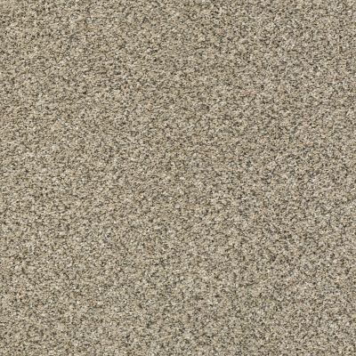 Shaw Floors Bellera Perpetual I Net Khaki 00700_E9787