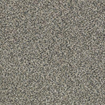 Shaw Floors Bellera Perpetual II Net Shadow 00504_E9788