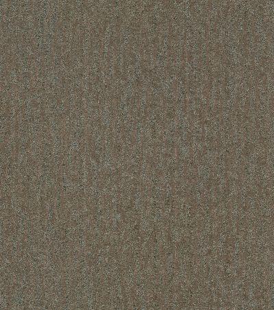 Shaw Floors Bellera Obvious Choice Net Mahogany 00702_E9791