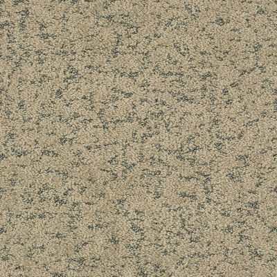 Shaw Floors Bellera Make Your Mark Net Khaki 00700_E9792