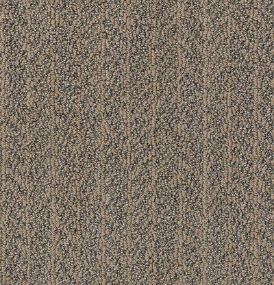 Shaw Floors Bellera Lead The Way Net Bronze 00602_E9794