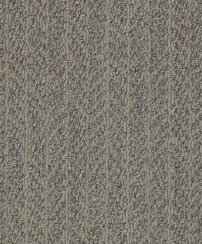 Shaw Floors Bellera Lead The Way Net Dreamy Taupe 00708_E9794