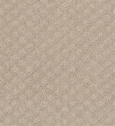 Shaw Floors Foundations Entwined With You Studio Taupe 00173_E9808