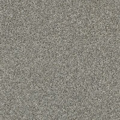 Shaw Floors Value Collections Shake It Up Tonal Net Dolphin 00520_E9859