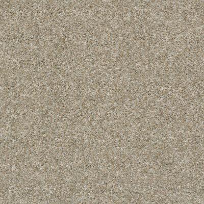 Shaw Floors All Over It I Raw Wood 00110_E9870