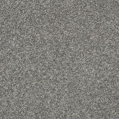 Shaw Floors All Over It I Sparrow 00504_E9870