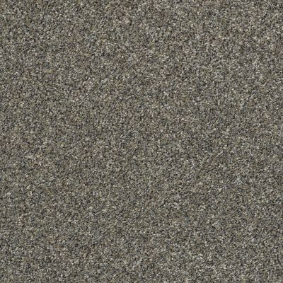 Shaw Floors Simply The Best All Over It II Granite Dust 00511_E9871