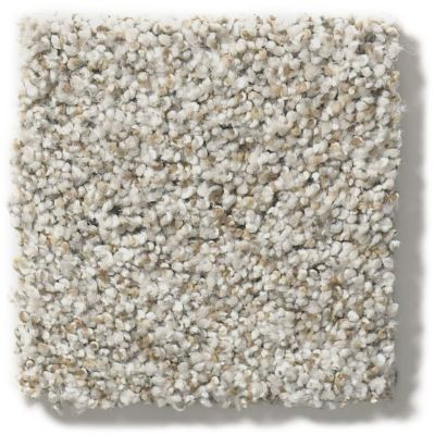 Shaw Floors Hubbell 31 Trade Wind 00576_E9881