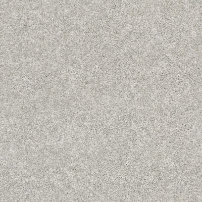 Shaw Floors Value Collections All Over It II Net Dove 00500_E9891