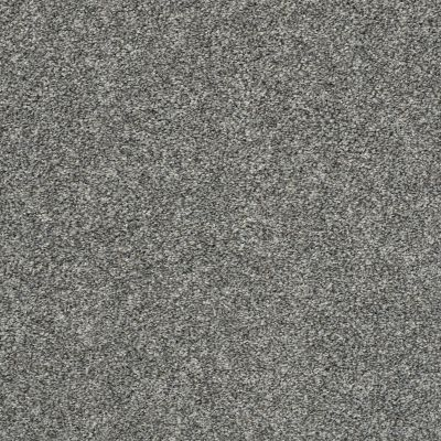 Shaw Floors Value Collections All Over It II Net Sparrow 00504_E9891